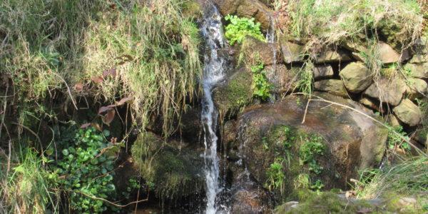 Barranco Sin Nombre, Pisueña