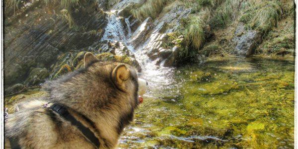 Cascada en el Río Miera