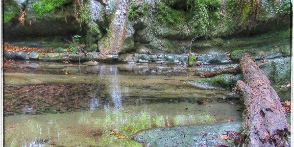 Arroyo Seco, afluente del Arroyo Cambilla, Saja