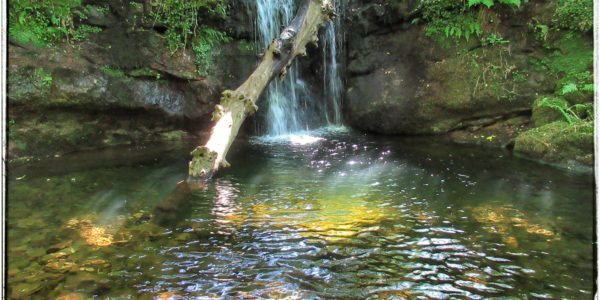 Senda al Nacimiento del Río Pisueña, Selaya.